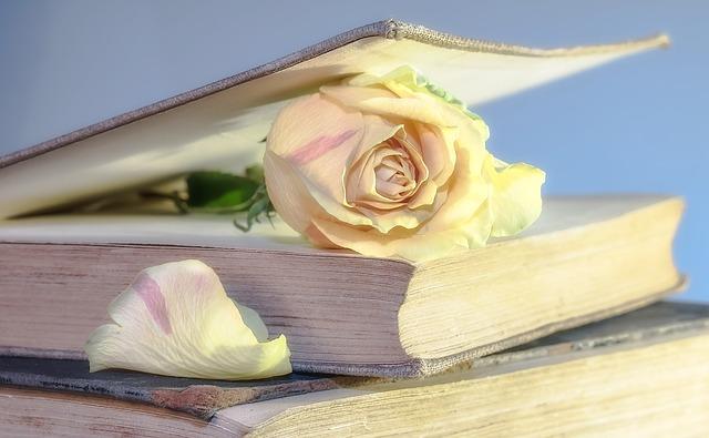 rose-2101475_640-1